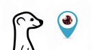 Meerkat vs Periscope: duel de vidéo en direct sur Twitter